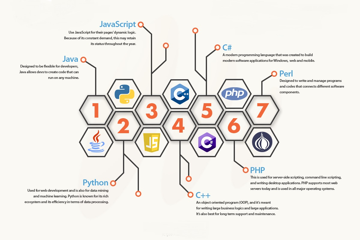 For an Expert Web Developer Languages like Javascript, Java, Python, C++, PHP and Perl are really important as these are some of the most popular languages today.